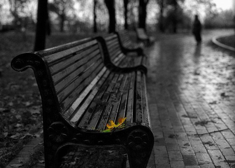 Это наша жизнь: Одиночество в сети или Не одиноки в одиночестве, фото-1
