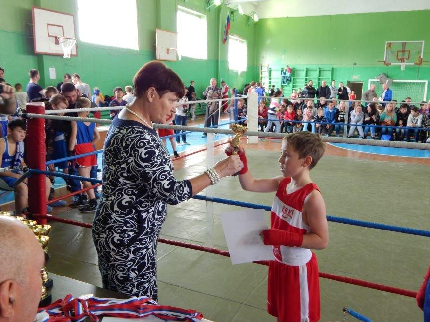Сезон бокса в Полевском открыт (фото) - фото 1