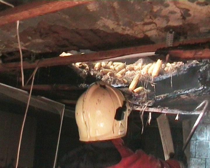 В Сумах из-за сена на чердаке мог сгореть весь дом (фото) - фото 1