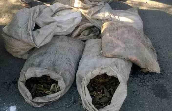 Вблизи Мариуполя задержали 2 автомобиля с продуктами (фото) - фото 2