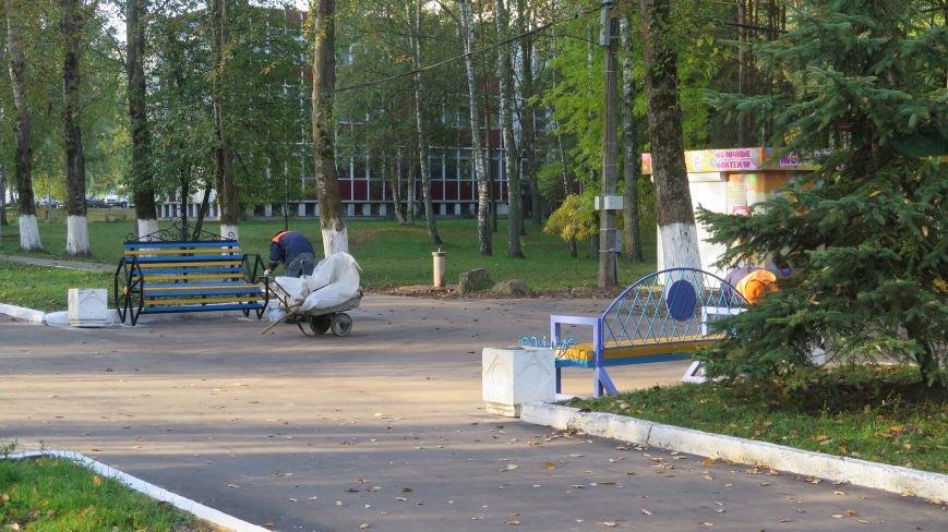 В Новополоцке  облагораживают парк культуры и отдыха, фото-10