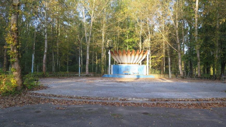 В Новополоцке  облагораживают парк культуры и отдыха, фото-6