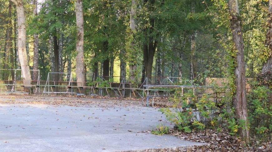 В Новополоцке  облагораживают парк культуры и отдыха, фото-7