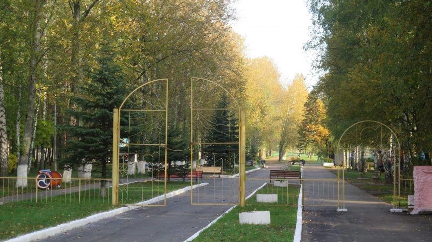 В Новополоцке  облагораживают парк культуры и отдыха, фото-2