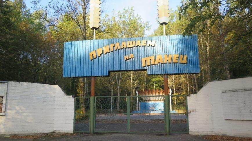 В Новополоцке  облагораживают парк культуры и отдыха, фото-8