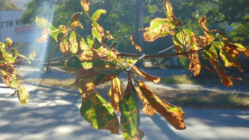 Мариуполь из лета попал в зиму (ФОТО) (фото) - фото 1