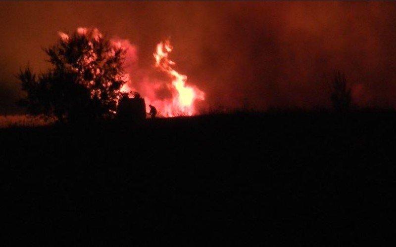 34 пожара в экосистемах пришлось тушить павлоградским спасателям только за неделю (фото) - фото 1