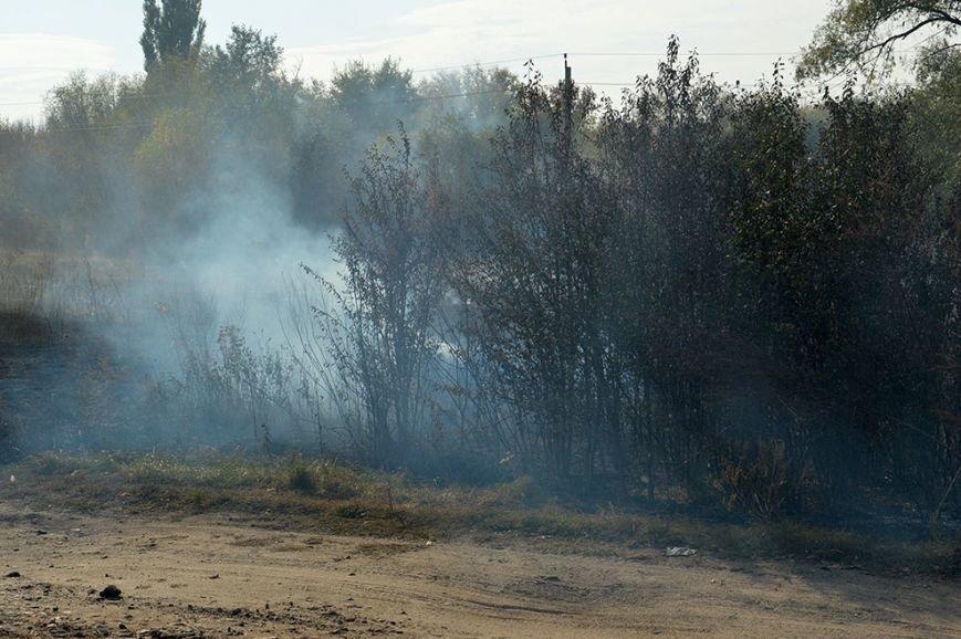 34 пожара в экосистемах пришлось тушить павлоградским спасателям только за неделю (фото) - фото 2