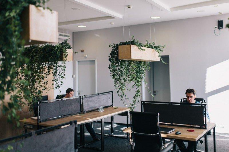 Первый на Днепропетровщине  IT-коворкинг «Лестница» скоро откроет двери для будущих программистов (фото) - фото 1