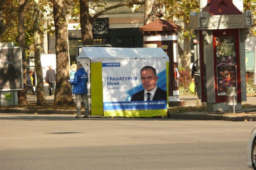 Фотопятница: Николаевская предвыборная лихорадка (ФОТО) (фото) - фото 28