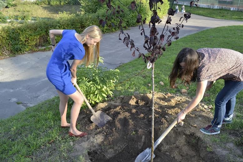 У Парку культури львів'янам пропонують посадити іменне дерево (фото) - фото 1