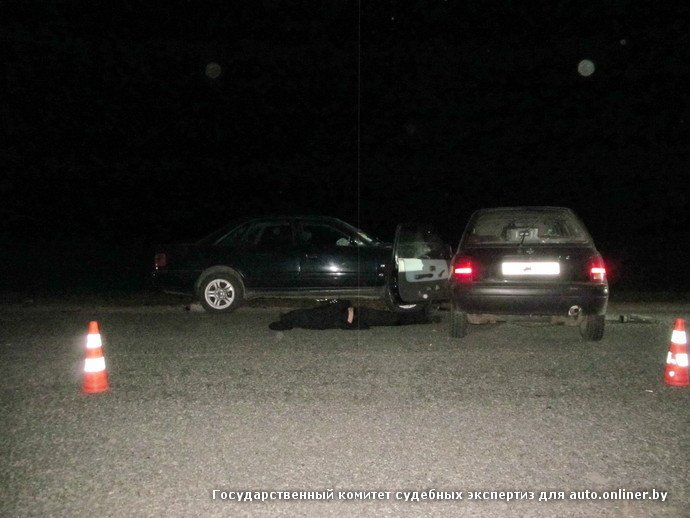 Пьяный маневр в Добрушском районе: водитель встречной машины погиб, пассажир в больнице (фото) - фото 1