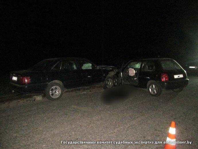 Пьяный маневр в Добрушском районе: водитель встречной машины погиб, пассажир в больнице (фото) - фото 4