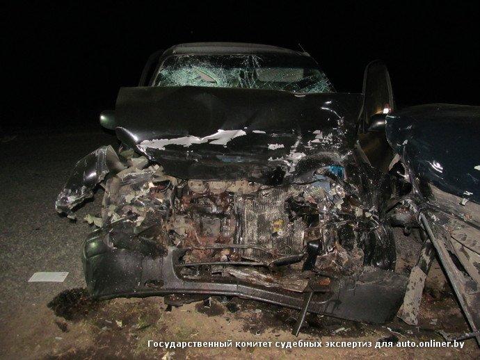 Пьяный маневр в Добрушском районе: водитель встречной машины погиб, пассажир в больнице (фото) - фото 2