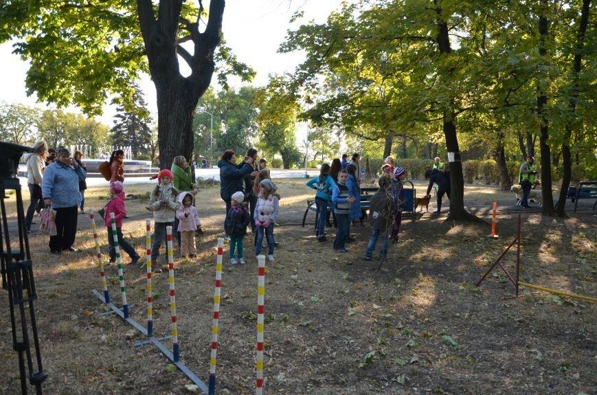 В Мариуполе Всемирный день психического здоровья провели с играми и собаками (ФОТО+ВИДЕО), фото-19