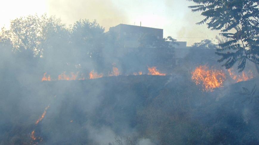 В Мариуполе произошел новый поджег зеленой зоны (ФОТОФАКТ) (фото) - фото 1