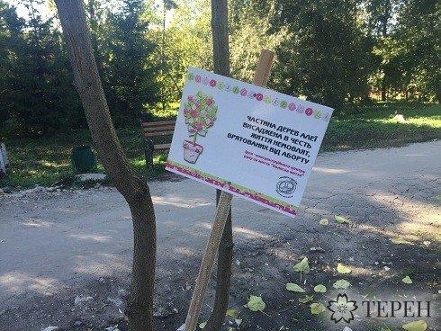 В тернопільському парку ростуть дерева на честь немовлят, врятованих від аборту (фото) (фото) - фото 2