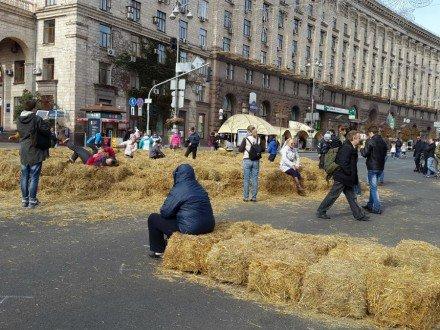 На Крещатике устроили традиционный сеновал (ФОТО) (фото) - фото 1