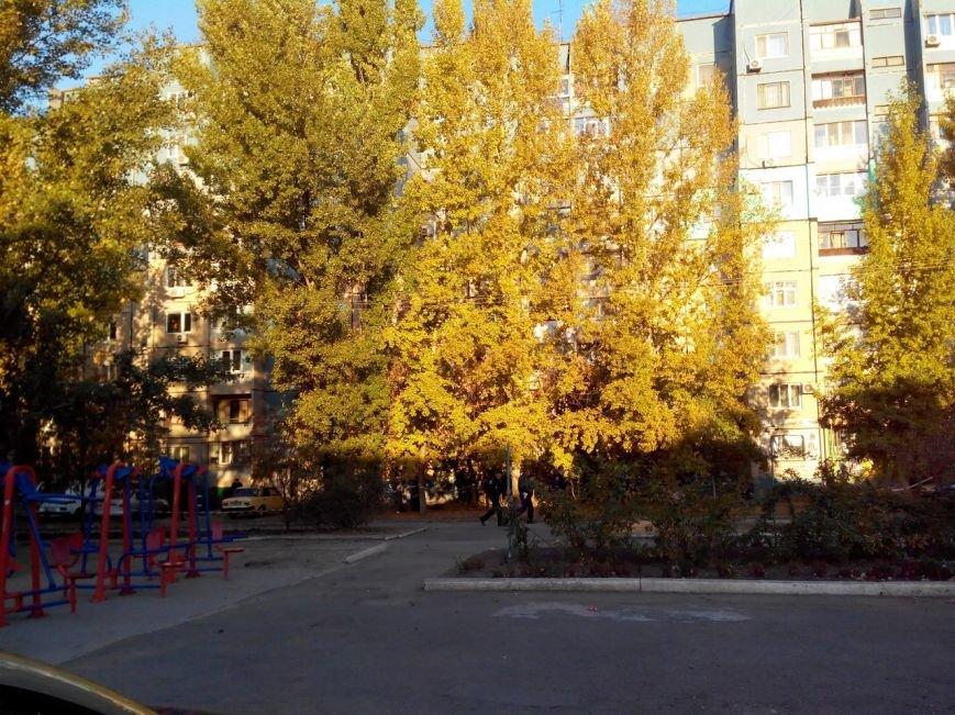 В Кривом Роге на территории школы №130 подорвался на гранате мужчина (ФОТО) (фото) - фото 1