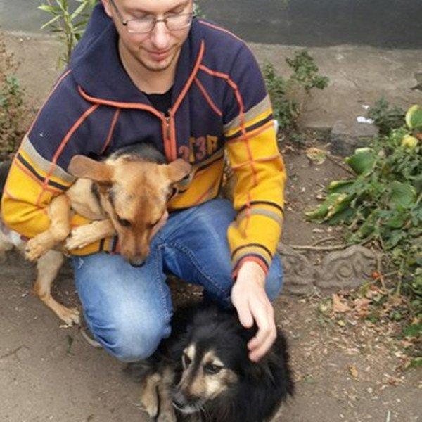 Николаевцы организовали флешмоб помощи животным (ФОТО) (фото) - фото 4