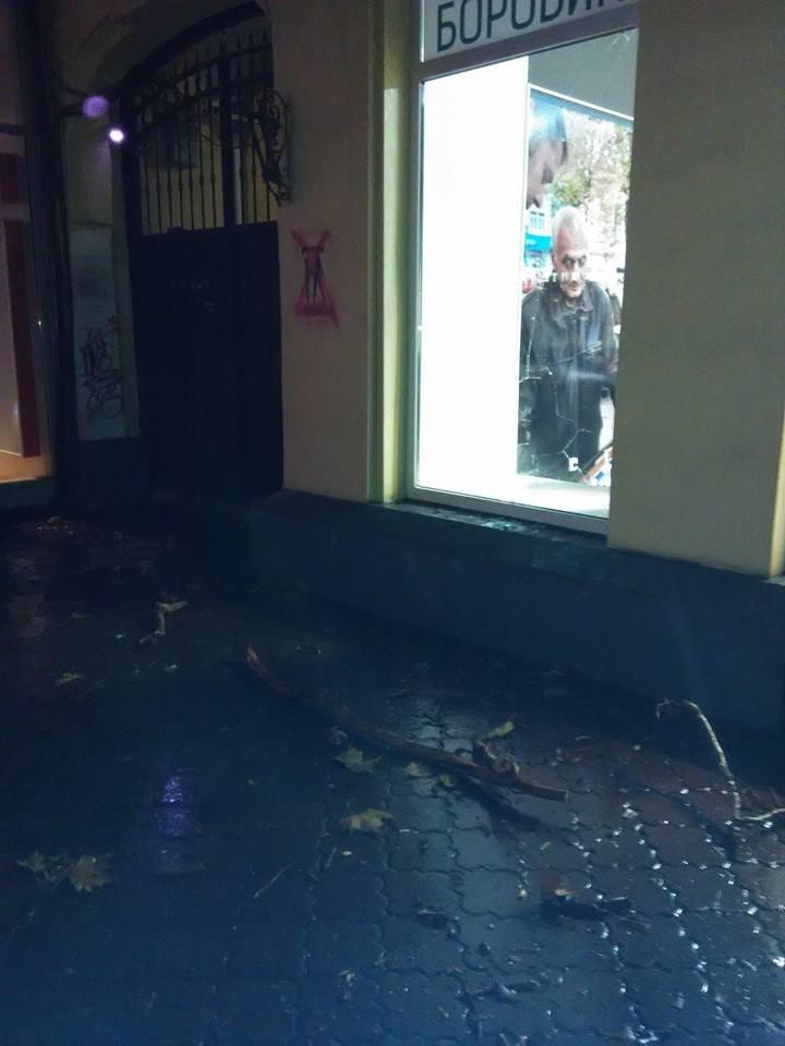 В центре Одессы падающая с дерева ветка выбила витринное окно офиса (ФОТО) (фото) - фото 1
