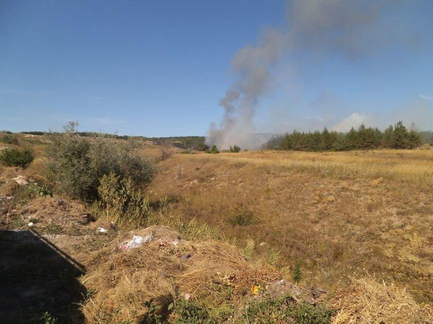 В Краматорском ландшафтном парке пожар уничтожил 9 га травы (фото) - фото 1