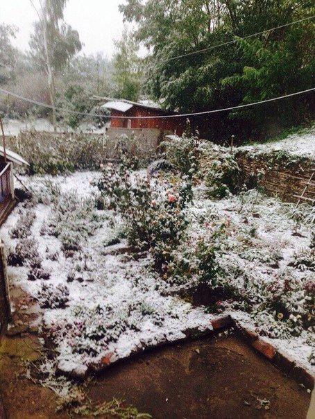 В деяких районах Тернопільщини випав перший сніг (фото) (фото) - фото 1