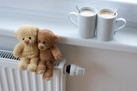 Почему отопление в Пушкине включают десять дней?, фото-3