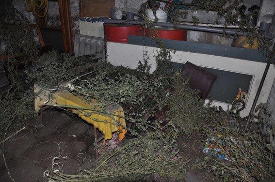 В Николаеве милиция поймала торговца амфетамином (ФОТО, ВИДЕО) (фото) - фото 3