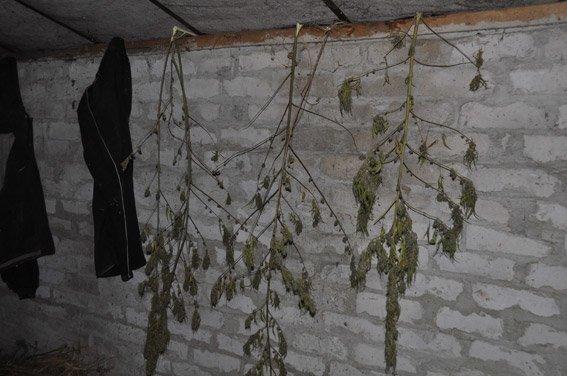 В Николаеве милиция поймала торговца амфетамином (ФОТО, ВИДЕО) (фото) - фото 1