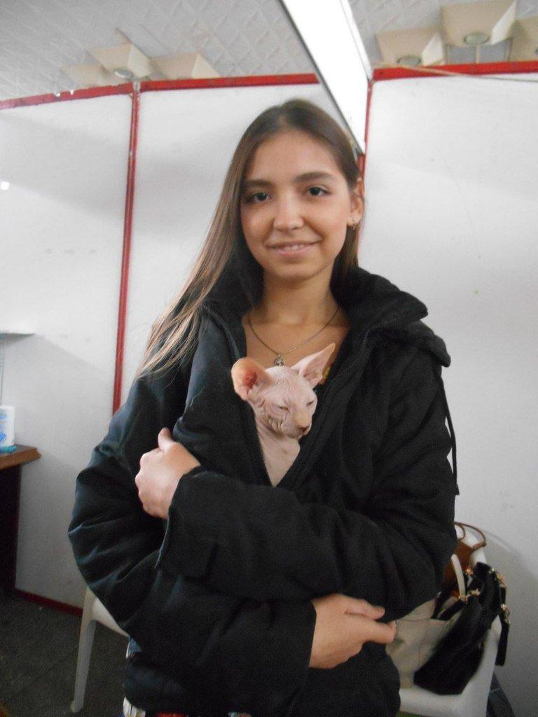 В Николаеве прошла международная выставка кошек (ФОТО) (фото) - фото 2
