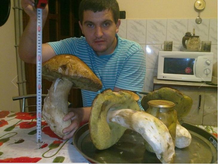 У мережу виклали фото рекордно великого білого гриба (ФОТО), фото-1