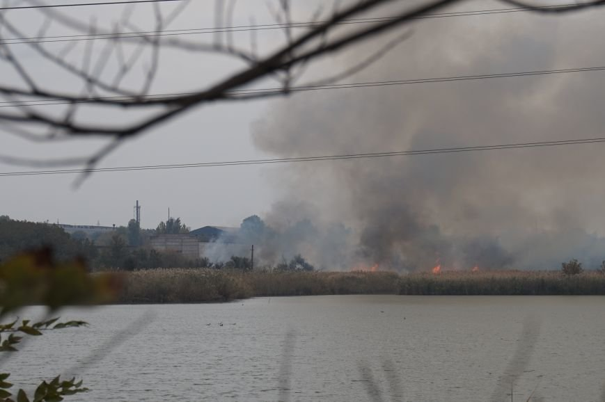 В Кривом Роге горит камыш возле кладбища в Жовтневом районе (ФОТО) (фото) - фото 1
