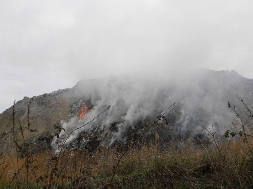 В Чернигове снова горела мусорная свалка (фото) - фото 1