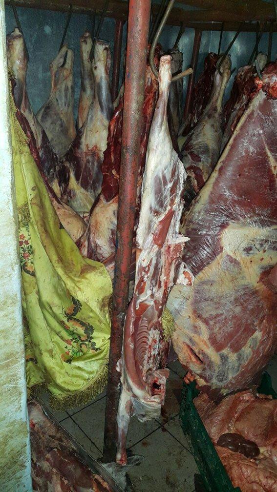 На Полтавщині викрили банду злочинців, яка займалася викраденням худоби (фото) - фото 1