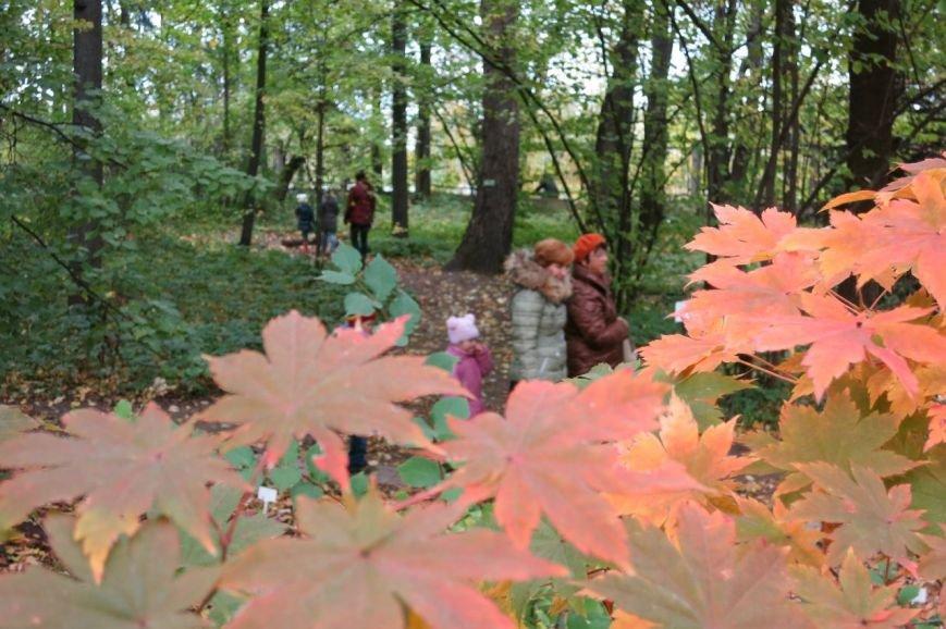 В Ботаническом саду прошел «Бал листопад» (фото) - фото 3