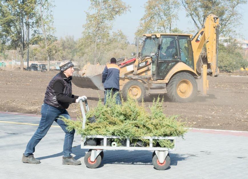 Город Синельниково стал образцом эффективного использования бюджета – Олейник, фото-4