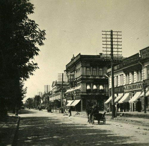 Дом Шишмана на Екатерининском проспекте: библотека, купеческий дом, магазин, фото-1