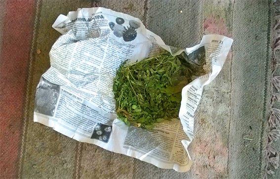 В Кировоградской области задержали человека, который увлекался марихуаной (ФОТО) (фото) - фото 1