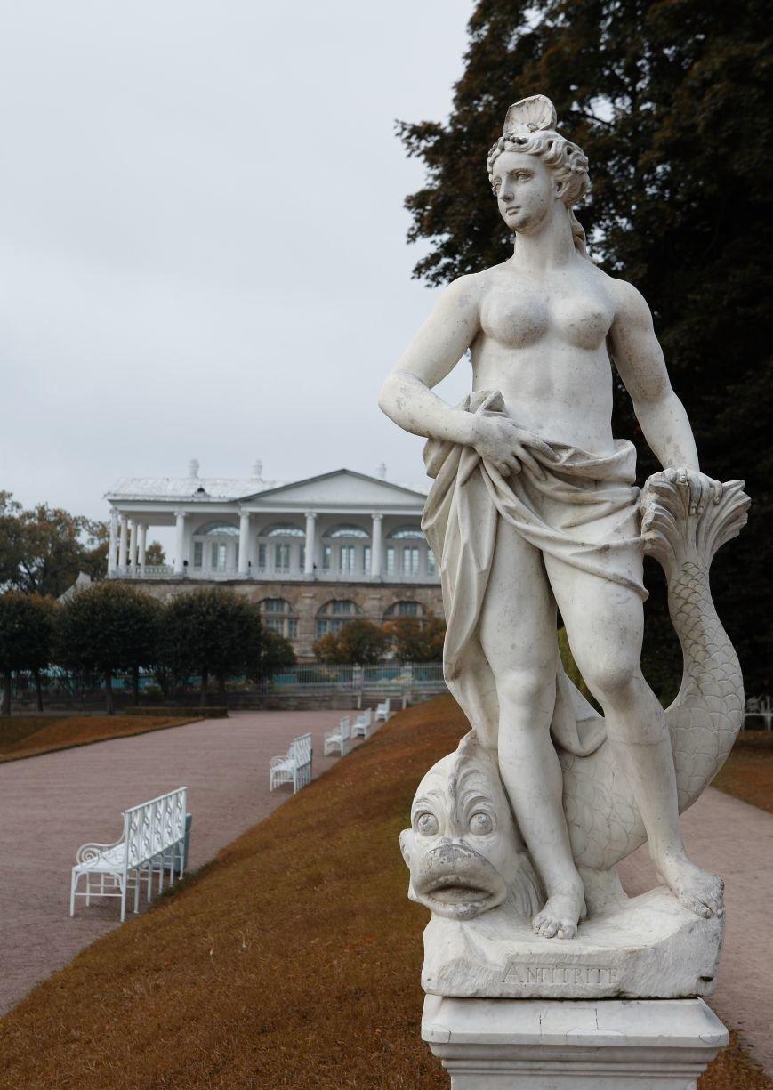 В Царском Селе включили в каталог коллекцию парковой венецианской скульптуры (фото) - фото 4