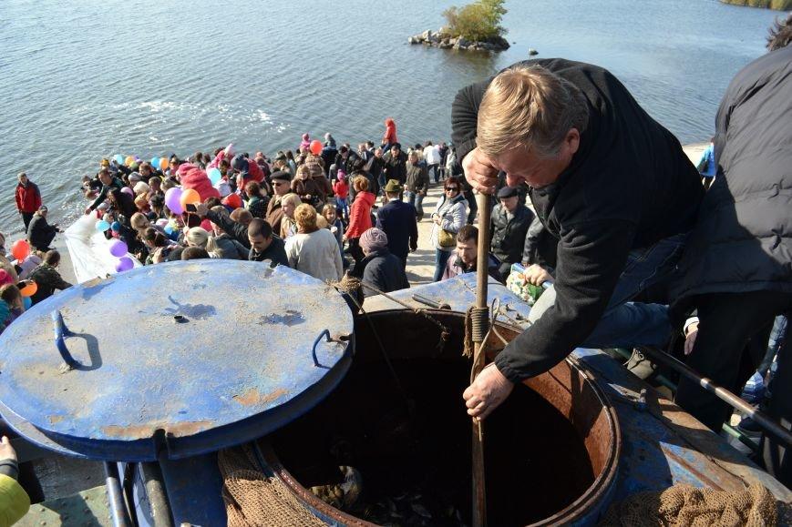 Днепродзержинцы приняли участие в зарыблении Днепра, фото-6