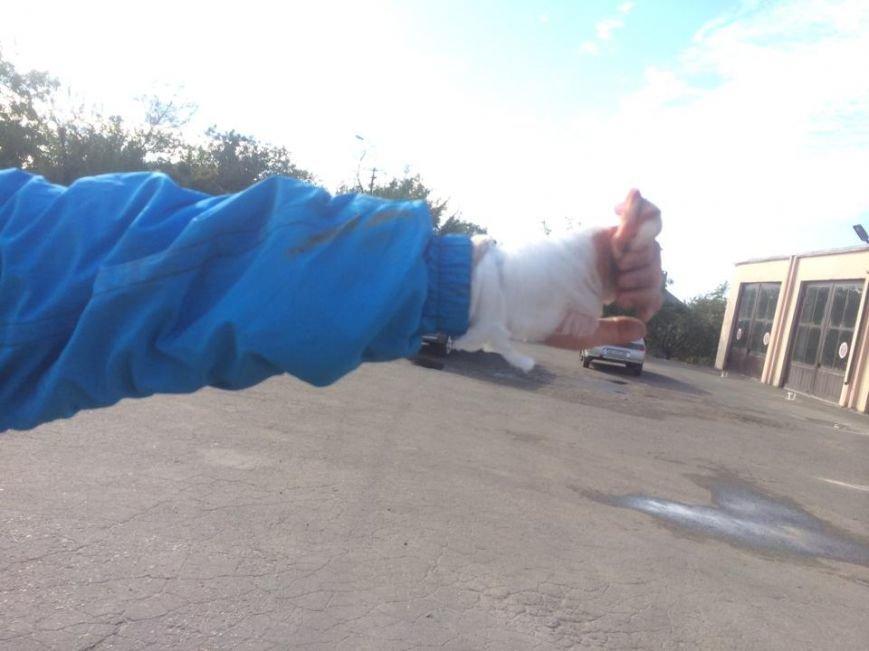 В Мариуполе  автомобиль, бурящий скважины, пробурил забор (ФОТО), фото-7