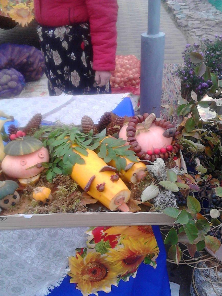 Фоторепортаж: В Полоцке прошла сельскохозяйственная ярмарка, фото-3