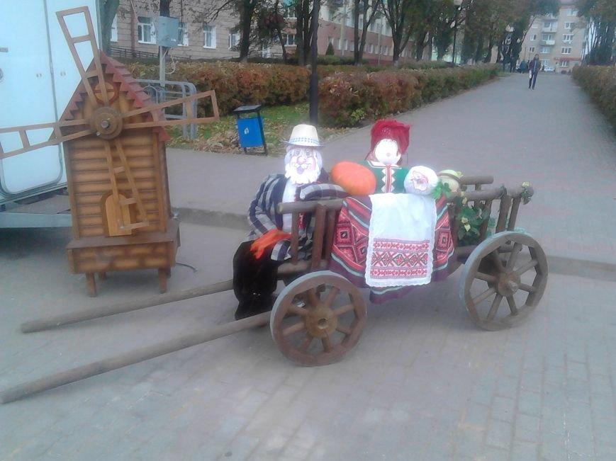 Фоторепортаж: В Полоцке прошла сельскохозяйственная ярмарка, фото-1