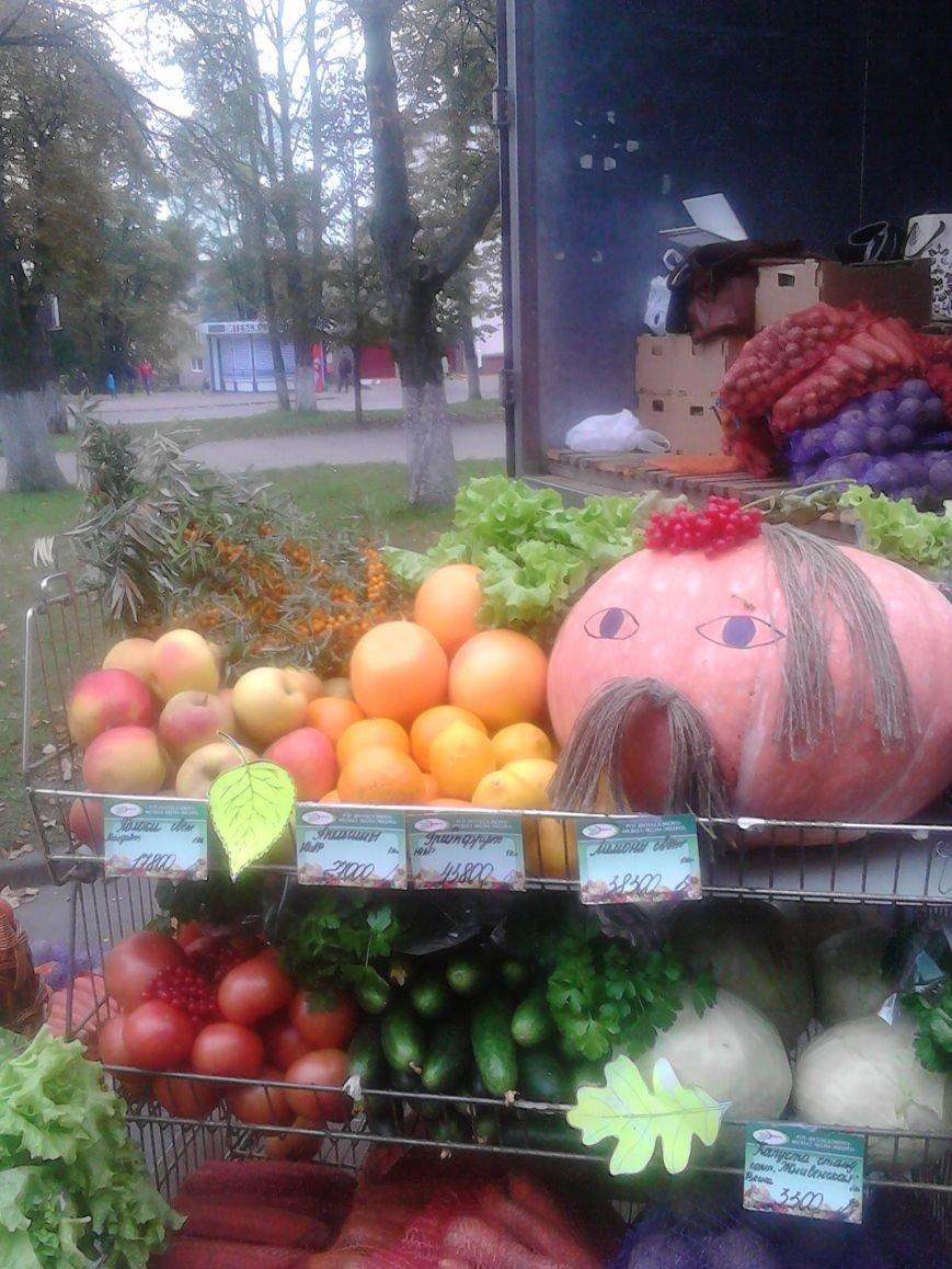 Фоторепортаж: В Полоцке прошла сельскохозяйственная ярмарка, фото-5