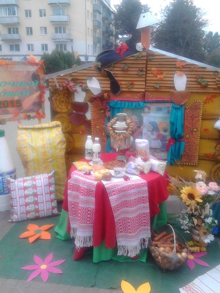 Фоторепортаж: В Полоцке прошла сельскохозяйственная ярмарка, фото-6