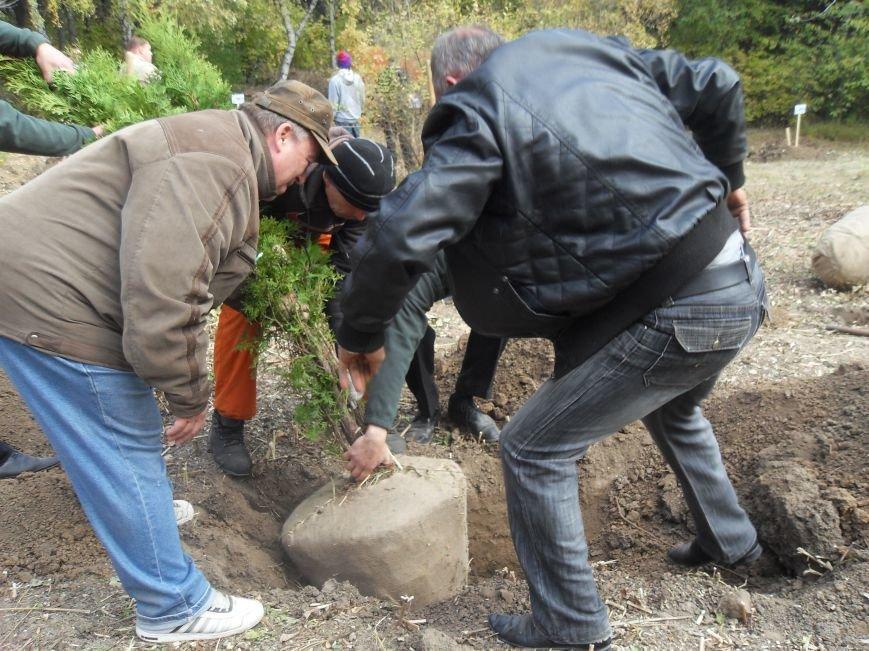 У Полтаві посадили Іменну Алею (ФОТО) (фото) - фото 5