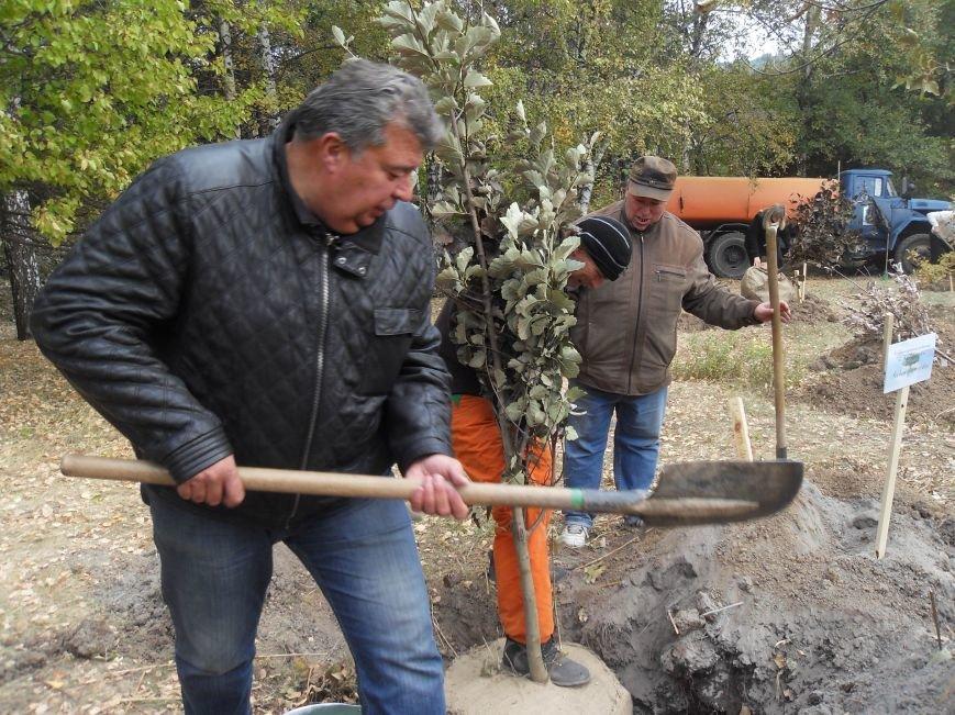 У Полтаві посадили Іменну Алею (ФОТО) (фото) - фото 6
