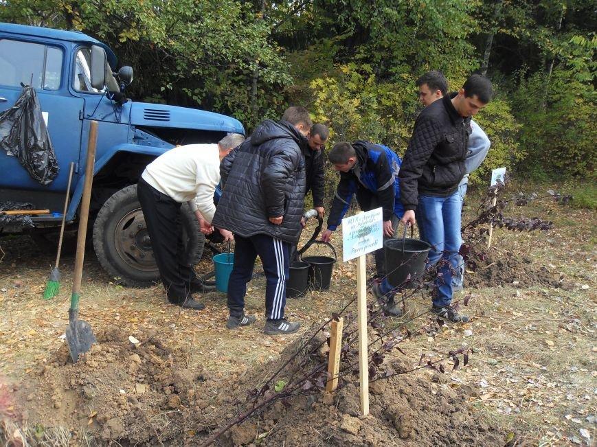 У Полтаві посадили Іменну Алею (ФОТО) (фото) - фото 4