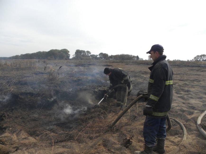 В 70 километрах от Чернигова вторую неделю горят торфяники (фото) - фото 1